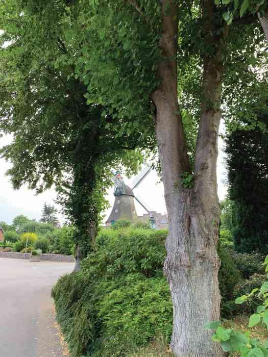 Windmühle Auguste in Groß Wittensee