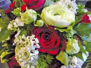 Blumen Dammann