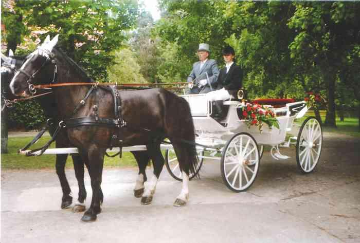 Friedrichs-Hof weiße, mit Rosen geschmückte Kutsche für Hochzeiten