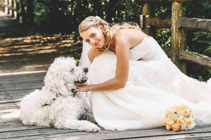 Die Hochzeitsfotografin Mascha Pohl - map - aus Hamburg zeigt auf diesem romantischen Hochzeitsfoto eine Braut mit weißem Hund.