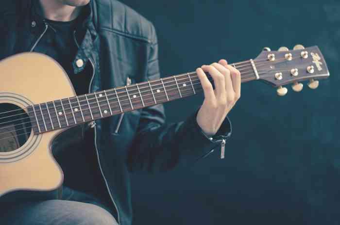 REDMAN und Friends Gitarre