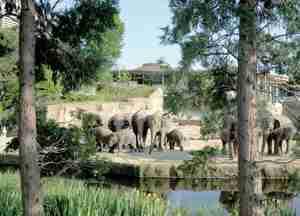 Zoologischer Garten Köln