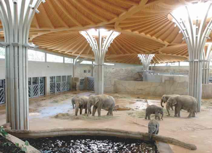 Elefantenpark Mecklenburg