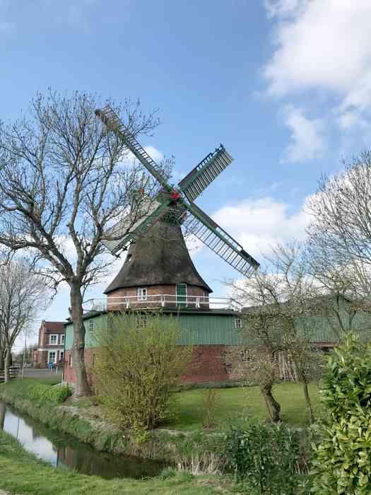 """Windmühle """"Gott mit uns"""" in Eddelak im Obstgarten umgeben vom Wassergraben."""