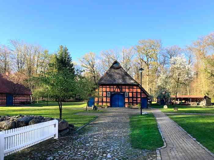 Heimathaus Wachholz mitten im Buchenwald.