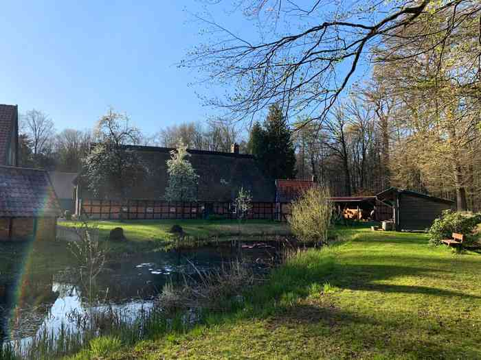 Gelände des Heimathaus Wachholz.