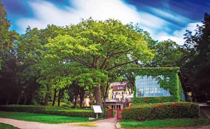 Park und Gebäude der Hochzeitslocation Kurhaus am Inselsee in Güstrow Mecklenburg-Vorpommern.
