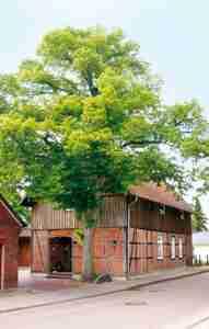 Heimathaus in Dorfmark