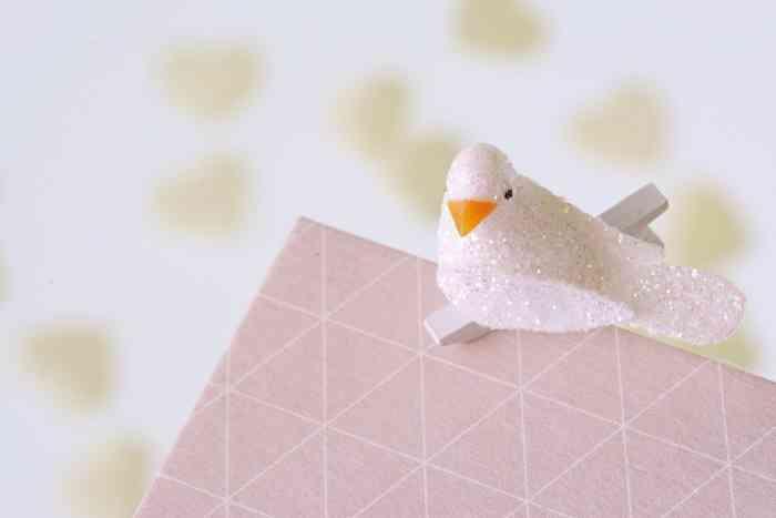 Ein glitzernder Vogel an eine rosa Glückwunschkarte geklammert der Papeterie und Schreibwaren Otto F.K. Koch.