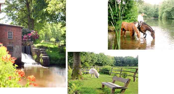 Mühle und Pferdekoppeln des Hotels Hof Sudermühlen