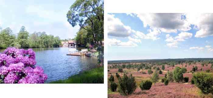 Mühlensee und Heide