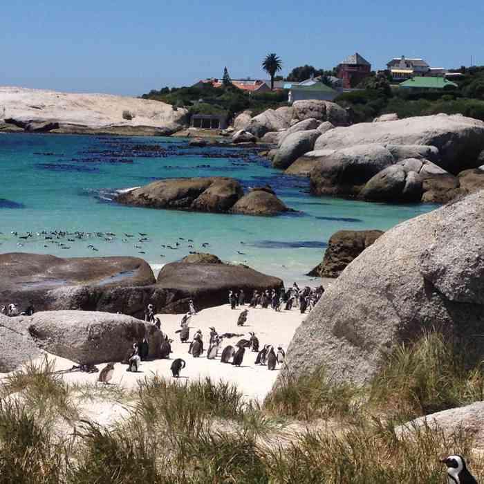 Südafrika ist reich an Vielfalt - in jeder Hinsicht.