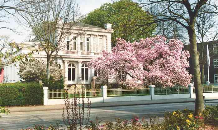 Das Standesamt Elmshorn im Kreis Pinneberg ist ein beliebter Trauort für Brautpaare aus Hamburg und dem Umland.