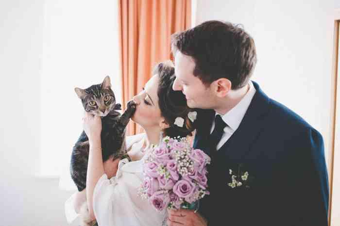 Brautpaar mit Katze fotografiert von Juli Schneegans Fotografie